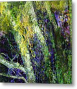 Birches Metal Print