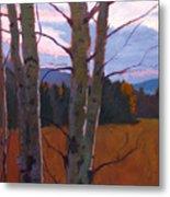 Birches At Twilight Metal Print