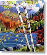 Birches By The Lake Metal Print