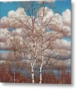 Birches In The Spring Metal Print