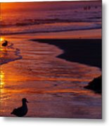 Bird At Sunset Metal Print