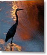 Bird Fishing At Sundown Metal Print