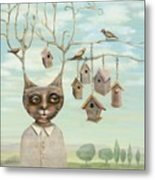 Bird Houses Metal Print