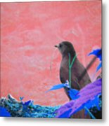 Bird In Abstract Metal Print