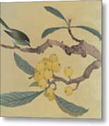 Bird In Loquat Tree Metal Print
