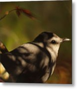 Bird In Tree With Young Leaf Metal Print