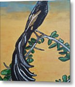 Bird Of Beauty, Ngiculela Metal Print