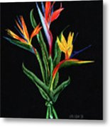 Bird Of Paradise In Black Metal Print