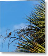 Bird On A Palm Branch Metal Print