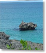 Bird On A Rock Metal Print