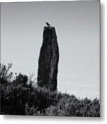 Bird On A Standing Stone Metal Print