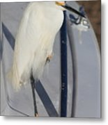 Bird On Boat Metal Print