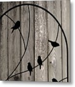 Bird Silhouettes On The Fence Metal Print