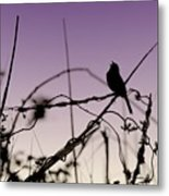 Bird Sings Metal Print