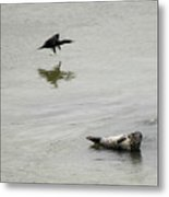Bird Watching Metal Print