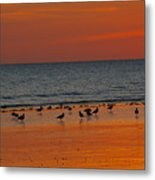 Birds Amongst The Glow Metal Print