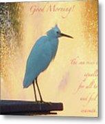 Birds And Fun At Butler Park Austin - Birds 3 Detail Macro Poster - Good Morning Metal Print