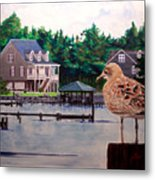 Birds Eye View Metal Print