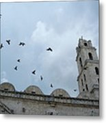 Birds Flying Above The Basilica And The Monastery Of Saint Francis Of Assisi Metal Print