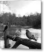 Birds I Metal Print