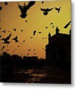 Birds In Flight At Gateway Of India Metal Print