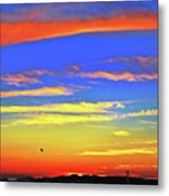 Birds In Nantucket Sunset From Eat Fire Spring Metal Print by Duncan Pearson