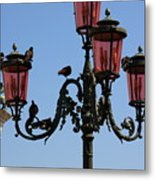 Birds On A Lamp Post In Venice Metal Print