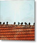 Birds On A Rooftop Metal Print