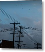 Los Angeles Birds On A Wire Metal Print