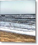 Birds On Beach 2 Metal Print