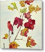 Birds On Maple Tree 12 Metal Print