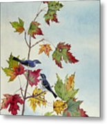 Birds On Maple Tree 7 Metal Print