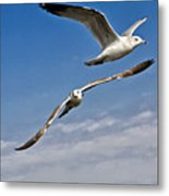 Birds On The Wing Metal Print