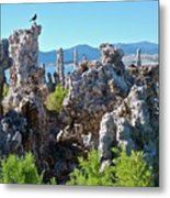 Birds On Tufa Towers-mono Lake Metal Print