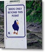 Birds Only Metal Print