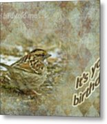 Birthday Greeting Card - White-throated Sparrow Songbird Metal Print