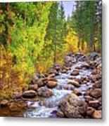 Bishop Creek In Autumn Metal Print