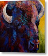Bison Head Study Metal Print by Marion Rose
