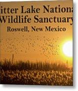 Bitter Lake National Wildlife Refuge Birds, Roswell, New Mexico Metal Print