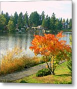 Bitter Lake Seattle Metal Print