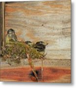 Bitty Birds Metal Print