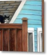 Black Alley Cat Metal Print