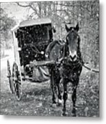 Black And White Amish Buggy Metal Print