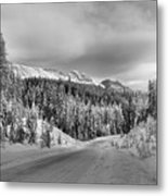 Black And White Bow Valley Parkway - Winter Metal Print