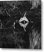 Black And White Cyclops Metal Print