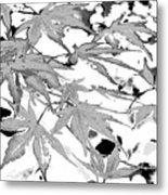 Black And White Equalized Metal Print