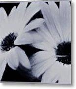 Black And White Floral Art Metal Print