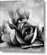 Black And White Is Beautiful Metal Print