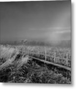 Black And White Misty Morning October Metal Print
