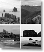 Black And White Olympic National Park Collage Metal Print